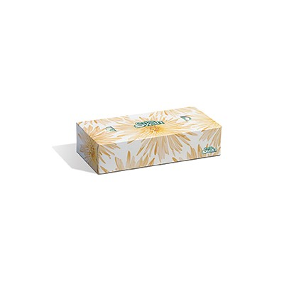 PFC FACIAL TISSUE WHITE SWAN